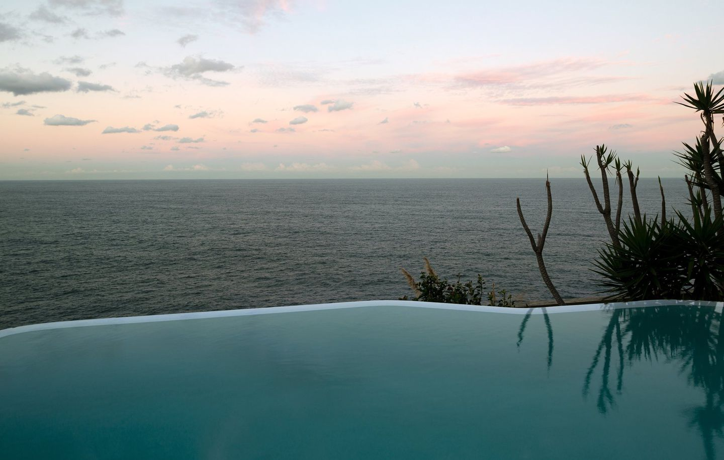 View of infinity pool overlooking ocean and horizon at cliff house in Dover Heights Sydney designed by Durbach Block Jaggers Architects