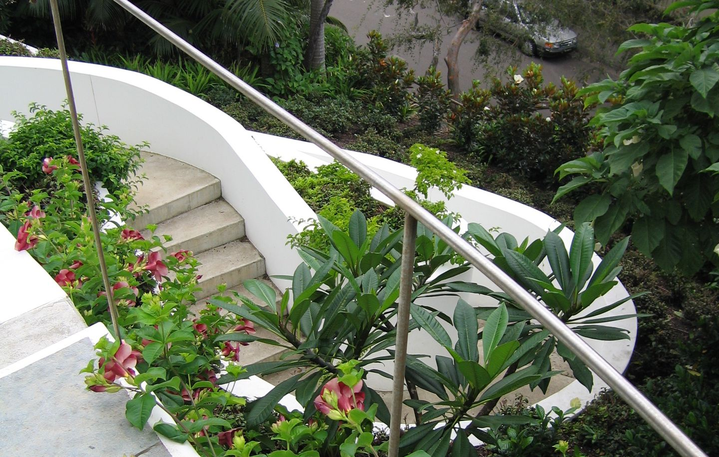 View of curved stone garden stairs with white rendered walls and fine stainless steel handrails at a family house at Bellevue Hill Sydney designed by Durbach Block Jaggers Architects