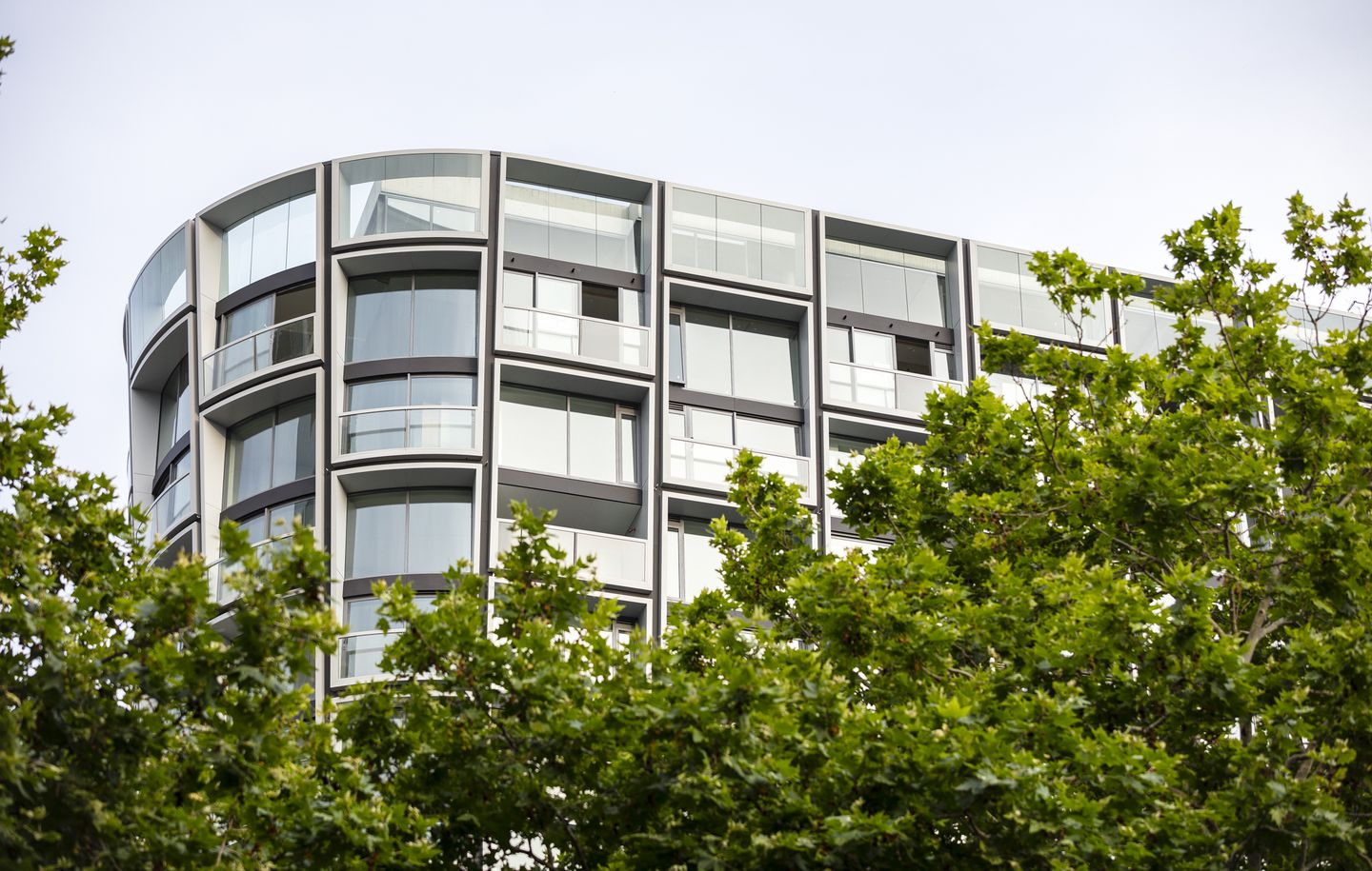 Close up view of Omnia Apartment building behind tree in Potts Point Sydney designed by Durbach Block Jaggers Architects Sydney